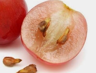 15 Khasiat Biji Anggur Untuk Kesehatan Dan Kecantikan