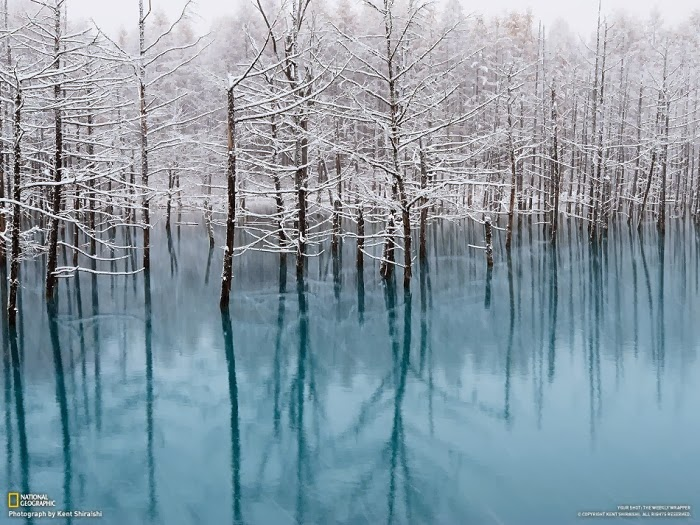 The Blue Pond, Biei, Hokkaido, Japan - Top 10 Amazing Sites Created by Snow and Ice