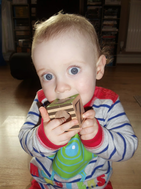 little boy sat up holding a wooden block to his mouth