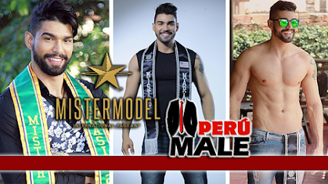 Mister Model International Brasil 2017