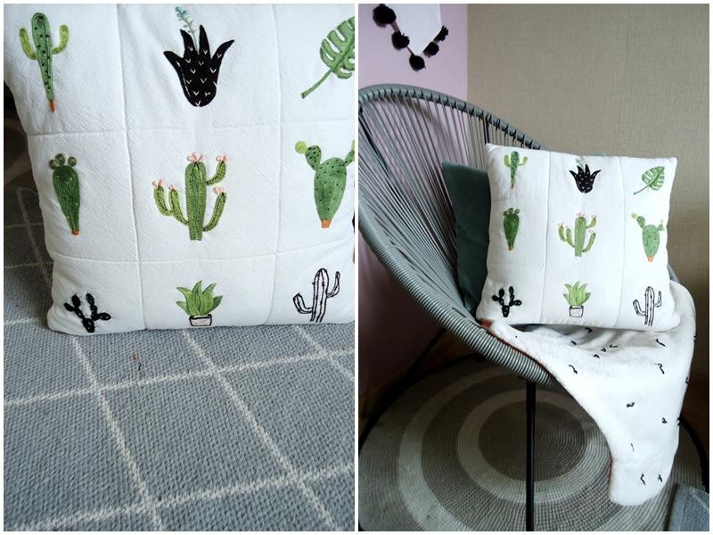 kaktusy na poduszce