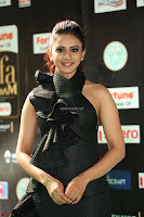 Rakul Preet Singh Sizzles in a Sleeveless Dress at IIFA Utsavam Awards 2017  Day 2  Exclusive 48.JPG