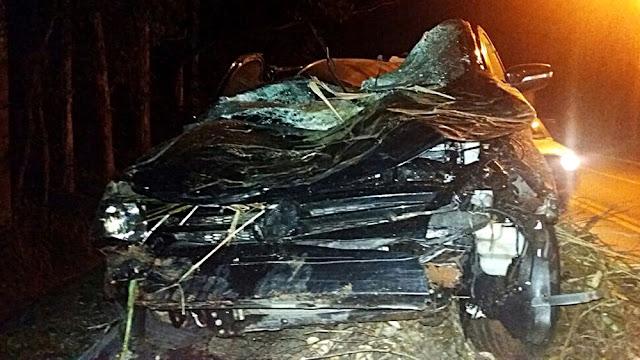 Médico bateu carro contra árvore na noite desta sexta-feira (30) em Pouso Alegre (MG) (Foto: Polícia Rodoviária Federal)