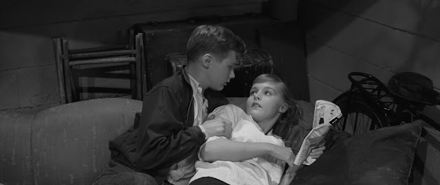 Blu-Ray Review | Hilda Crane/Blue Denim | Dir. Phillip Dunne