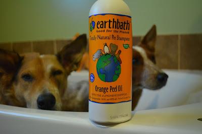 orange dog shampoo