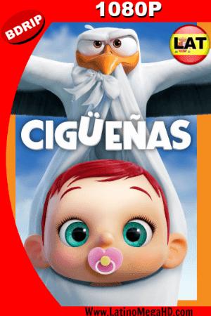 Cigüeñas: La Historia que no te Contaron (2016) Latino HD BDRIP 1080P ()