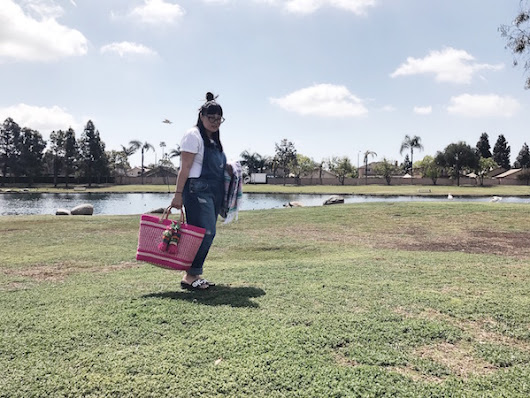PICNICS WITH THE PINK BAG