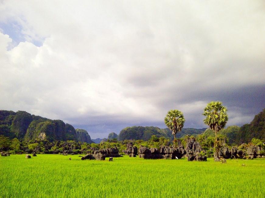 Hutan Karst Rammang-rammang