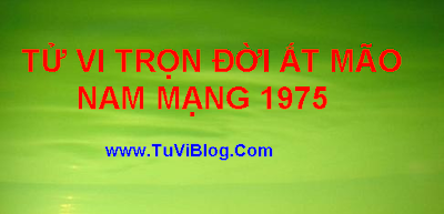 Boi Tu Vi Tron Doi 1975 AT MAO