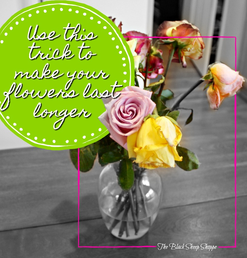 Use this trick to make your flowers last longer.