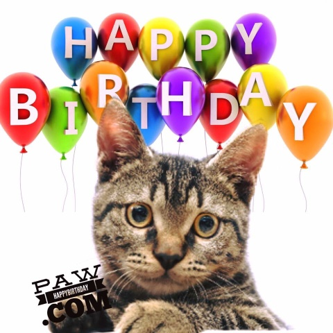 Free Happy Birthday Animated Greeting Cards Animations With Music Video And Images Share Wishes 365 A Year Songs More