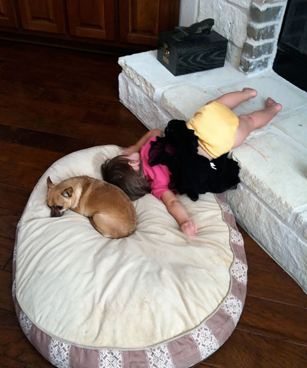 15+ Hilarious Pics That Prove Kids Can Sleep Anywhere - Napping On A Dog's Pillow