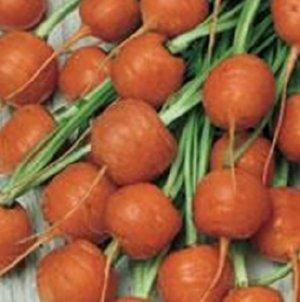 wortels zonde om weg te gooien