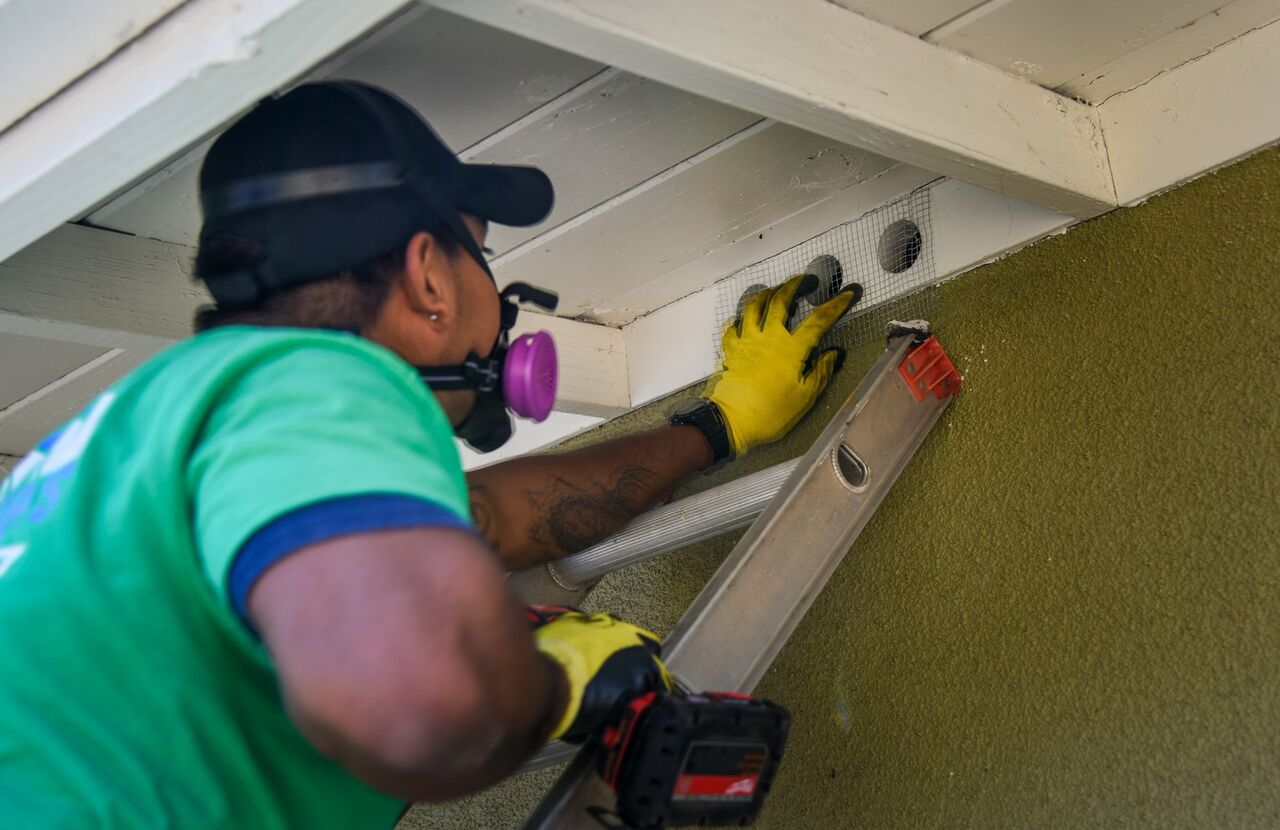 Attic Rat Proofing And How To Spot A Rat Infestation