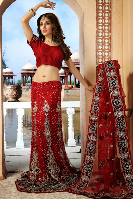Image result for lehenga choli photo
