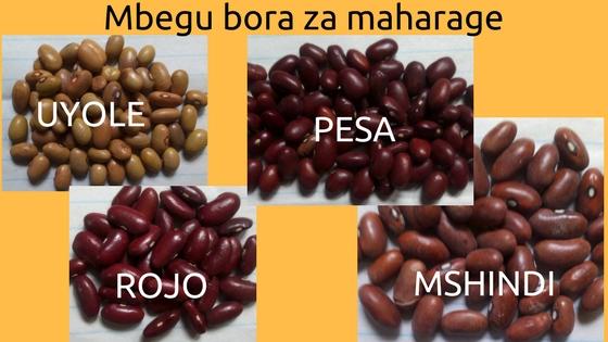 Kilimo Bora Cha Maharage