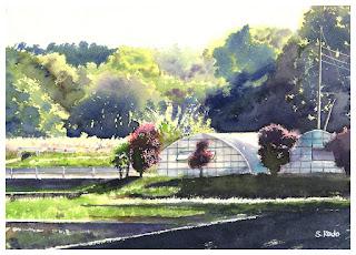 水田の奥にあるビニールハウスを描いた水彩画。小春日和の日差しが降り注いでいます。