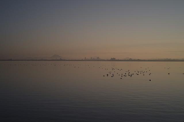 琵琶湖 冬の朝