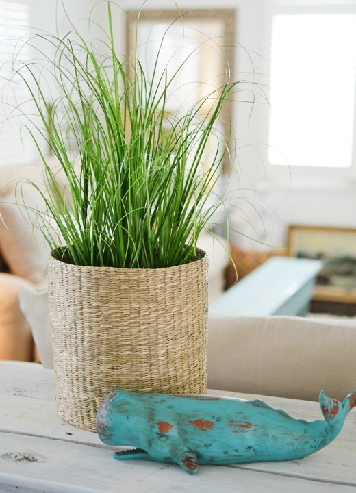 Basket Planter Coastal Decor Ideas