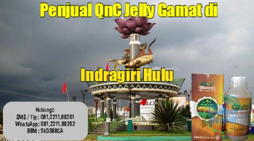 Penjual QnC Jelly Gamat di Indragiri Hulu