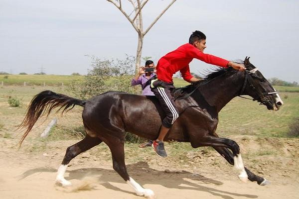 हरियाणा में आयोजित की गई देशी घोडियों की दौड़ प्रतियोगिता