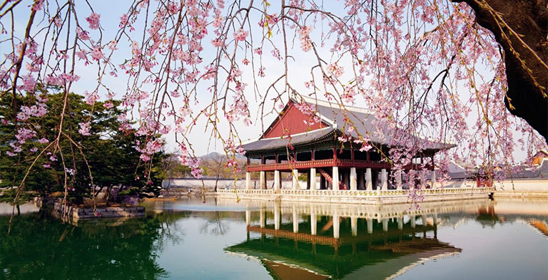 Seoul Tourist Destinations You Need to Explore
