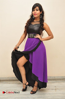 Telugu Actress Rachana Smith Stills at Money is Honey Audio Release  0045.jpg