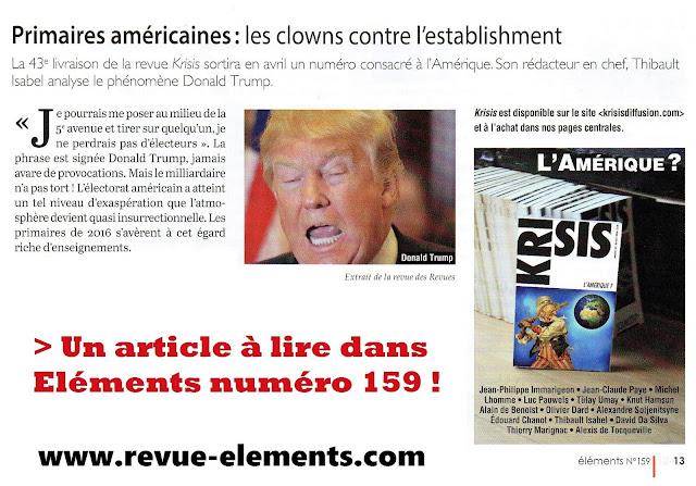 Eléments, Etats-Unis, article de Thibault Isabel