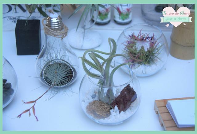 Eco Terrazas en Palo Market Fest Valencia 2017-2