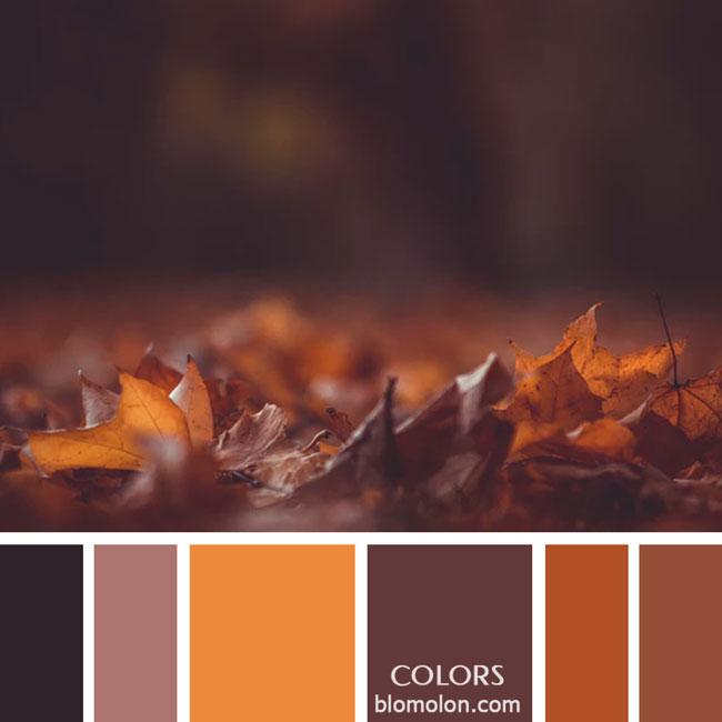 variedad_en_color_paletas_de_colores_27