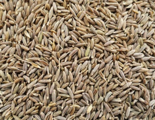 Cumin SeedsJeera as a Treatment of Hair Loss