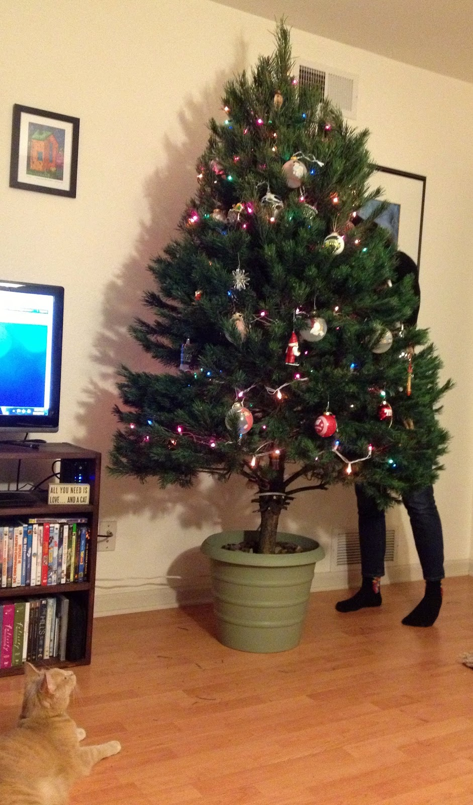 The Modern DIY Life: DIY Christmas Tree Stand
