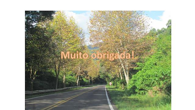Estrada para Nova Petrópolis