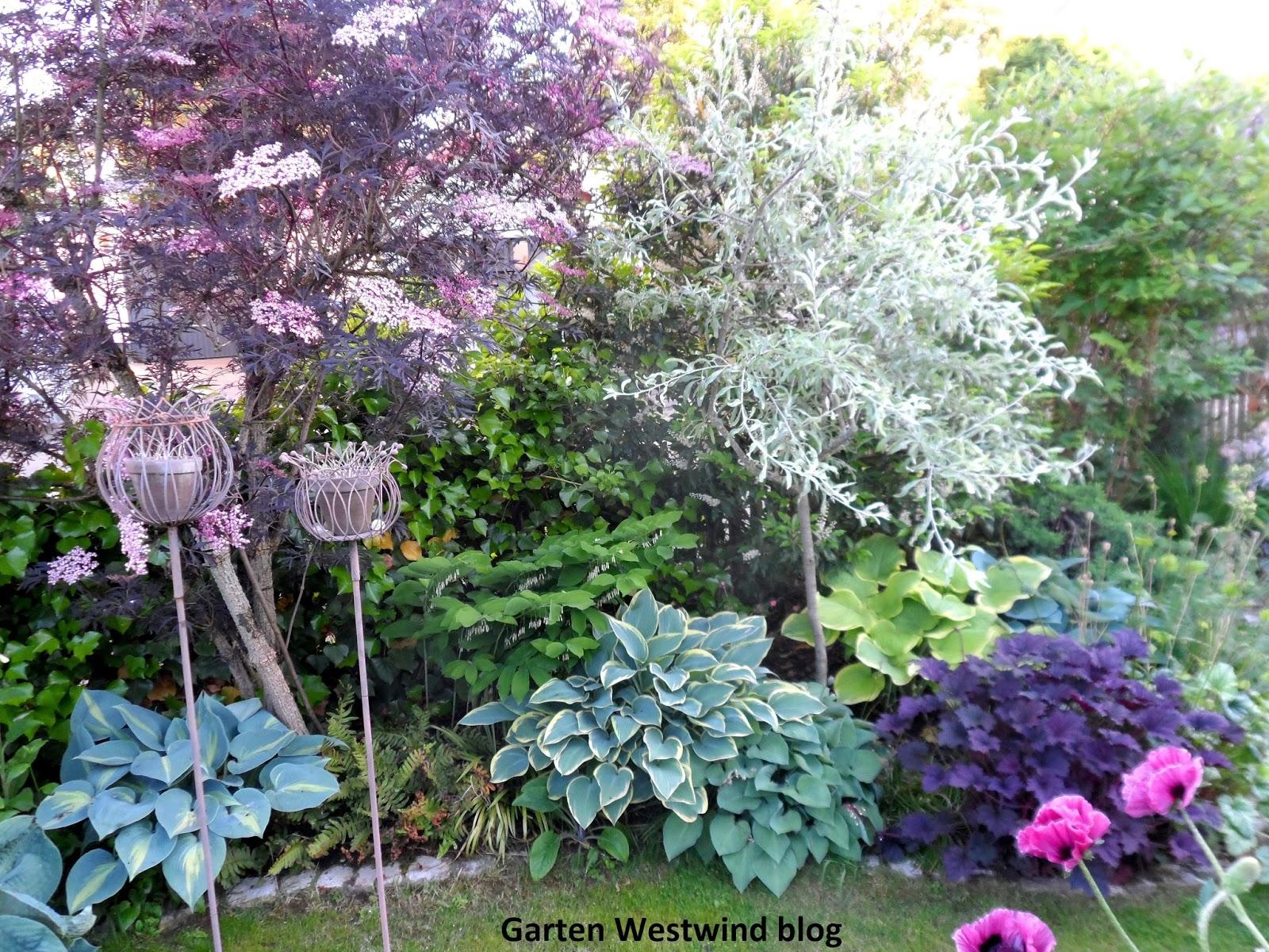 garten westwind ein kleiner familiengarten hereinspaziert wie der garten entstand. Black Bedroom Furniture Sets. Home Design Ideas
