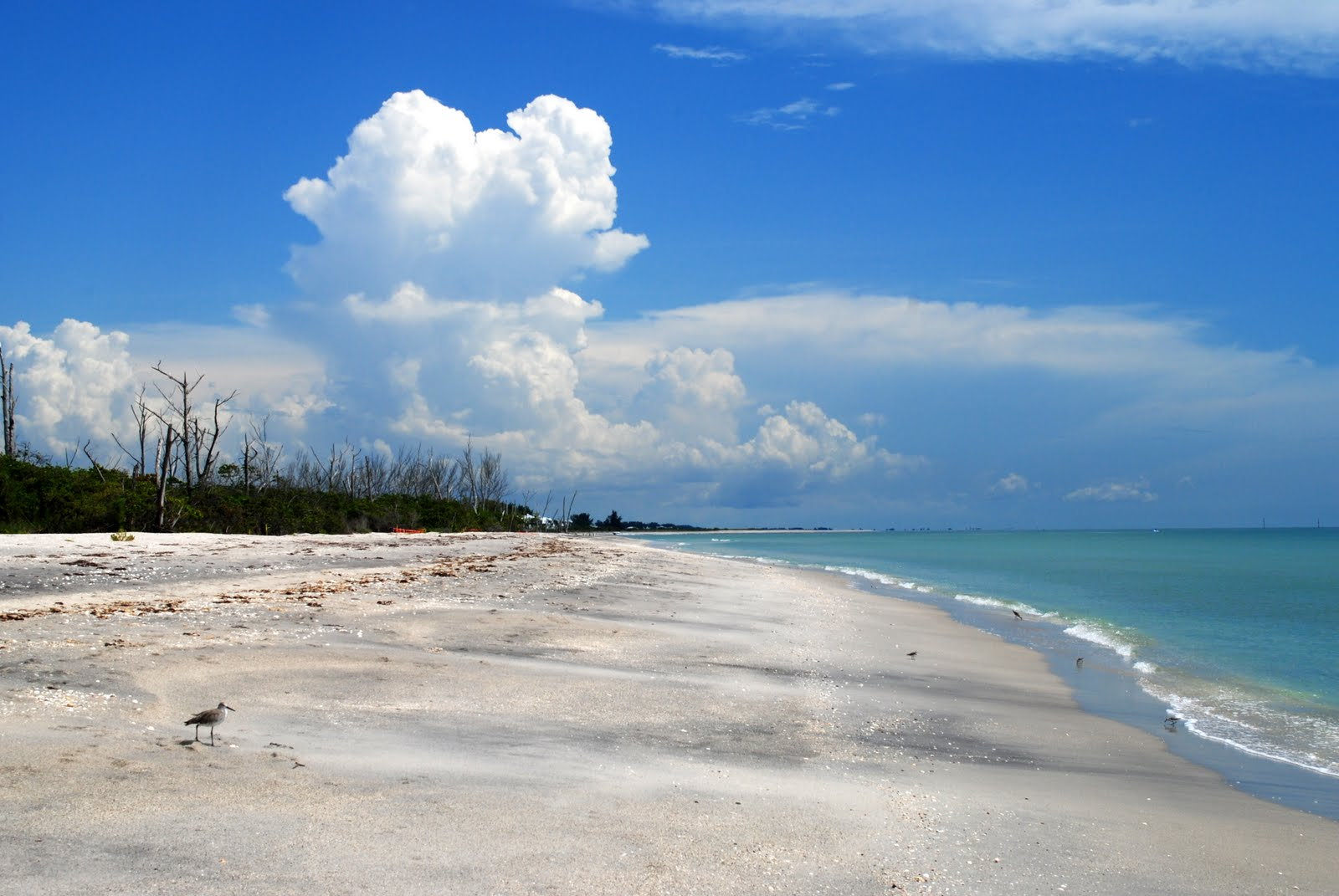Manasota Key Is A Long Narrow Barrier Island In Charlotte County Florida The North End Has Many Large And Expensive Sfront Vacation Homes Including