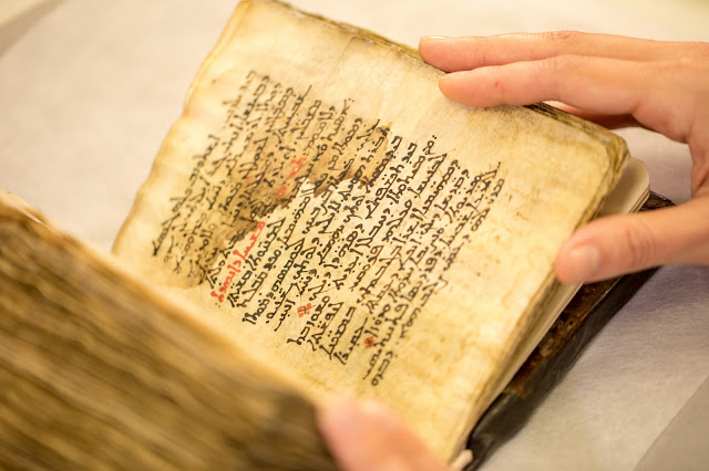 Medical text by ancient Greek doctor Galen uncovered beneath religious psalms on parchment
