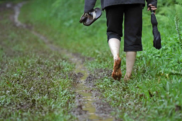 Popular innovative quotes on how to going off the beaten path