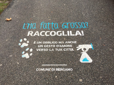 Pick up after you dog plea stenciled on a sidewalk in Bergamo.
