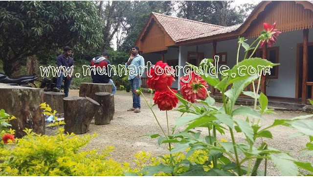 farm house bungalows in munnar for bachelors and family group, munnar bungalows for rent,
