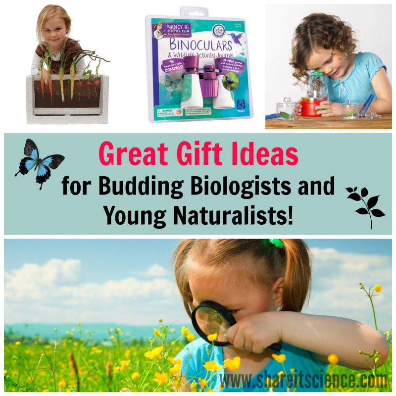 Gift Ideas For Budding Biologists And Naturalists