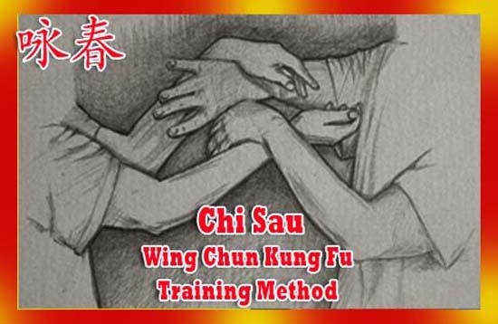 Chi Sau - Wing Chun Kung Fu Training Method