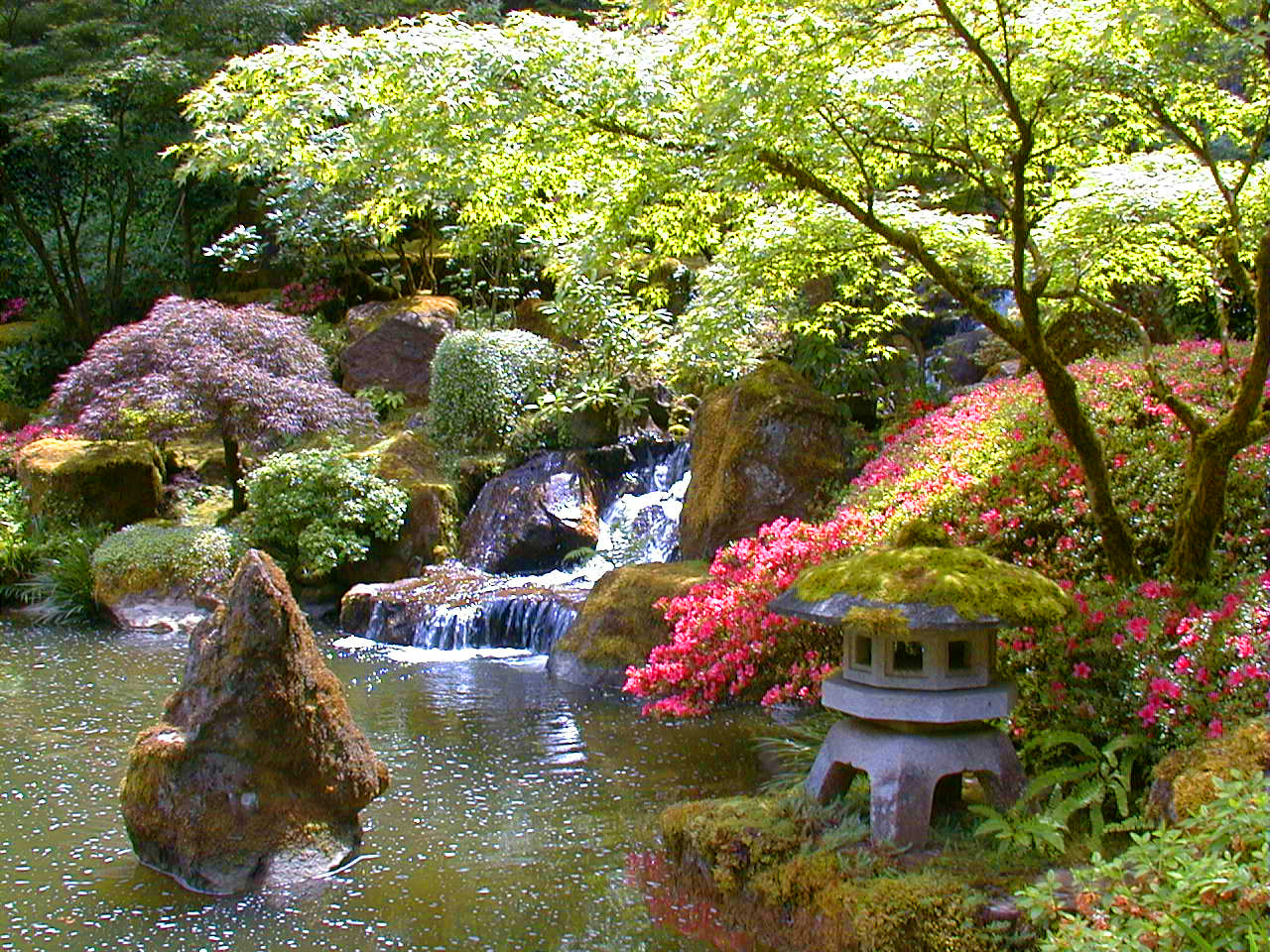 she wanted to make a japanese garden with cherry blossom a lake and a bridge so we did some research and settled on two photographs for inspiration - Japanese Garden Cherry Blossom Bridge