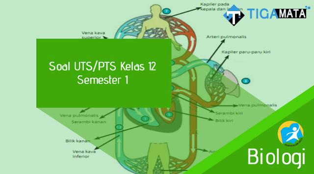 100 Contoh Soal UTS Biologi Kelas 12 Semester 1 Kurikulum 2013 dan Jawabannya