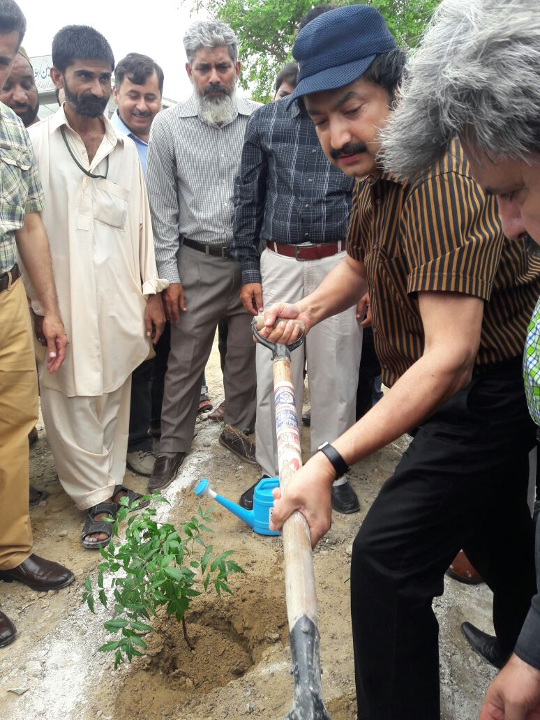 Plantation Begins From Home