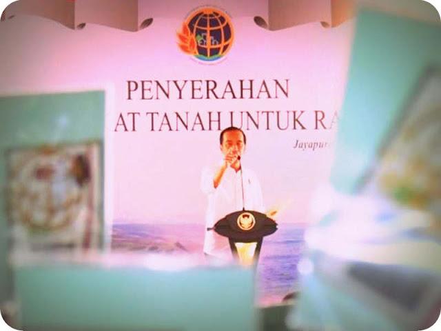 Ikan Sembilan Sembilan Kejutkan Presiden Jokowi