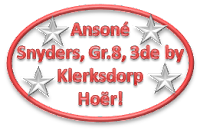 Ansoné Snyders, Gr.8, 3de by Klerksdorp Hoërskool met die lewering van haar redenaarstoespraak onder die ATKV se 2013 Tema TAAL!
