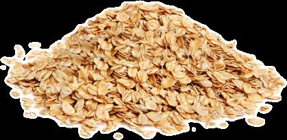 oat / haver