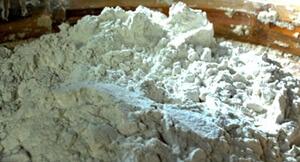Cara Fermentasi Ampas Tahu Untuk Pakan Lele