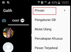 Privasi aplikasi GB WhatsApp