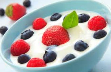 Fermentation Of Yogurt   ProcedureText